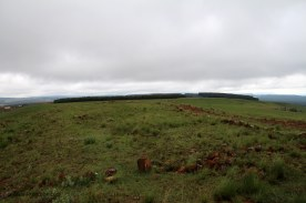 Looking East from where the uDloko, uDududu, isaNgqu and imBube attacked
