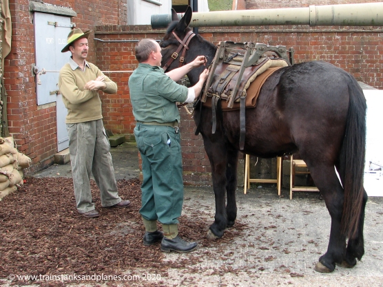 Meg the mule representing mules used in Burma by the Chindits - British